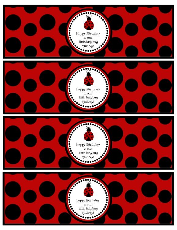 Chalkboard Ladybug Birthday Invitations