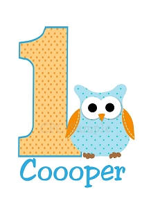 Personalized Owl Birthday T-Shirt or Bodysuit
