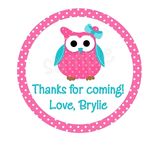 Personalized Owl Stickers, Pink and Blue
