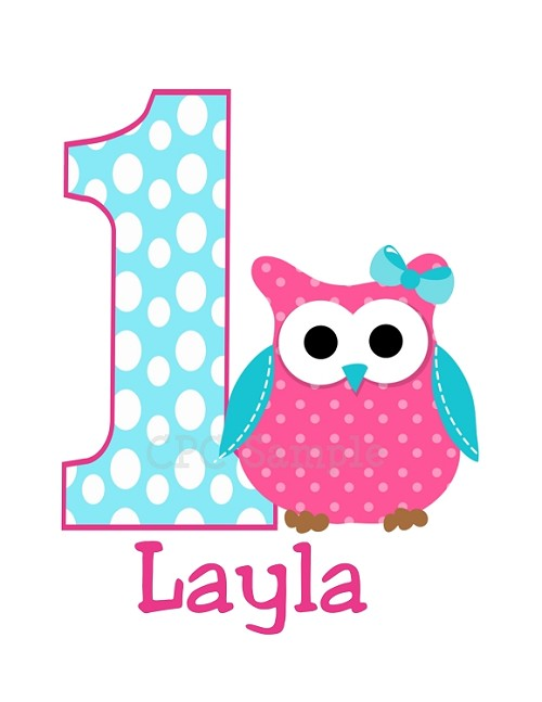 Personalized  Owl Birthday Number T-Shirt or Bodysuit (ANY NUMBER AVAILABLE)