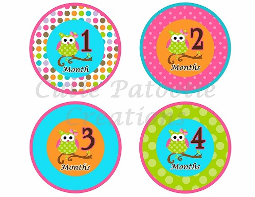 OWL Monthly Onesie Stickers - Monthly Baby Sticker - Milestone Stickers - You Print